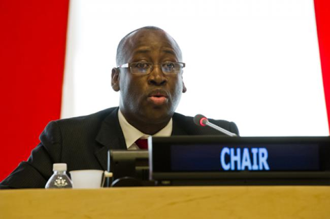Sustainable development vital for post-2015 agenda: UN