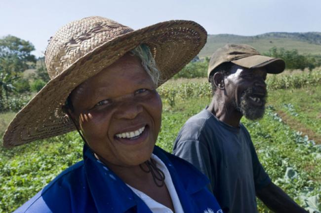 UN spotlights role of family farms in reducing poverty
