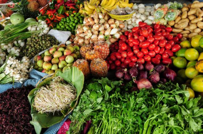UN urges nutrition strategies for global right to food