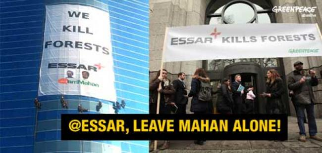 Greenpeace forest activists scale Essar HQ
