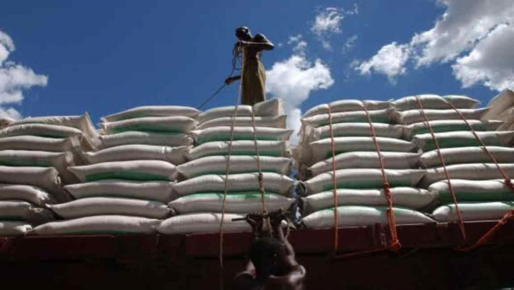 Rising shipping costs set to lift the global food import bill to more than $1.3 trillion – UN agency