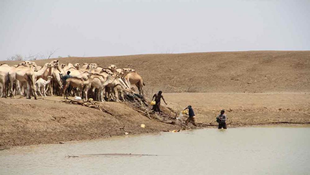 UN warns of worsening hunger in East Africa amid third consecutive failed rainy season
