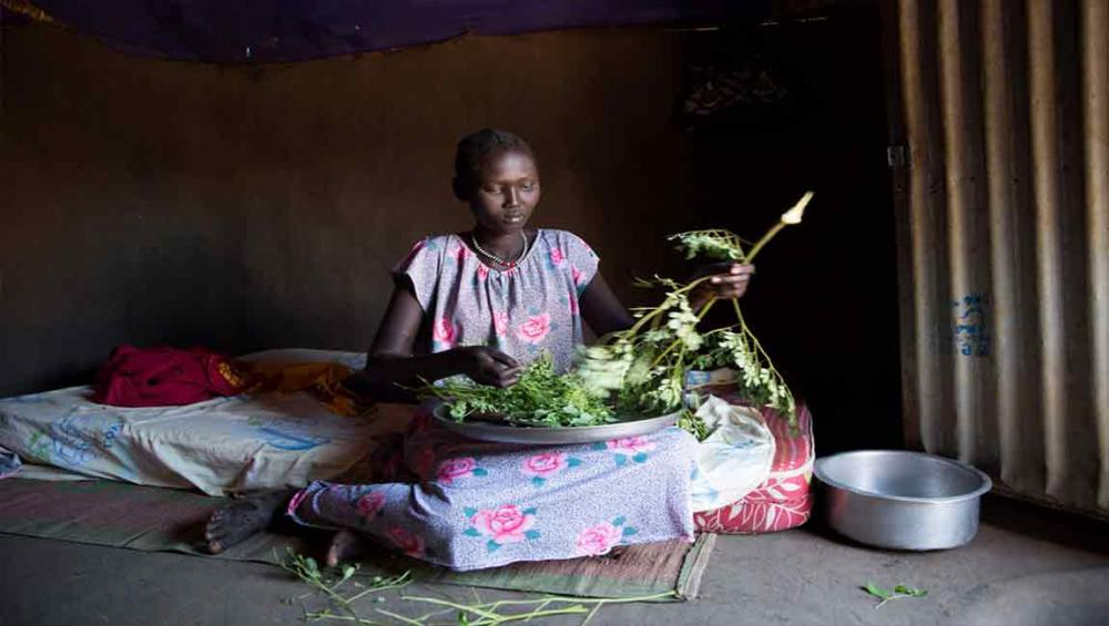Harvest season provides meagre respite to South Sudan's ongoing hunger crisis