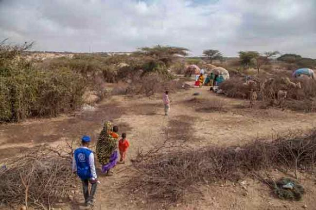 UN migration agency launches $24.6 million appeal for drought-hit Somalia