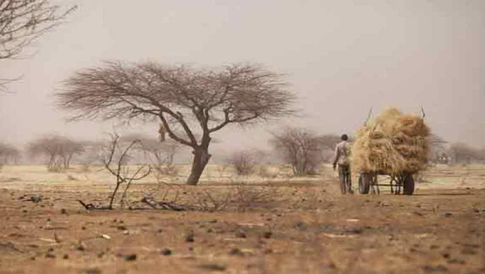 Security Council considers measures to support regional force in the Sahel