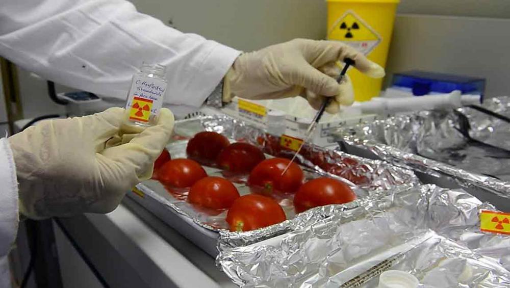 UN agencies explore nuclear applications to combat food fraud and contamination
