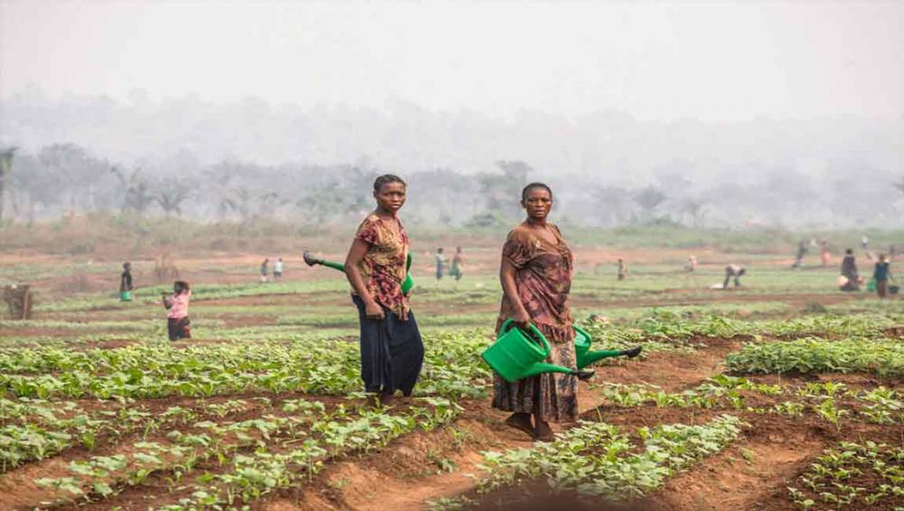 Thousands in DR Congo's Kasais to benefit from UN food, nutrition efforts, but challenges remain
