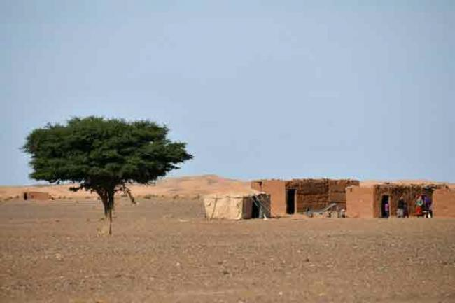 UN agriculture agency warns of water scarcity in North Africa and Near East