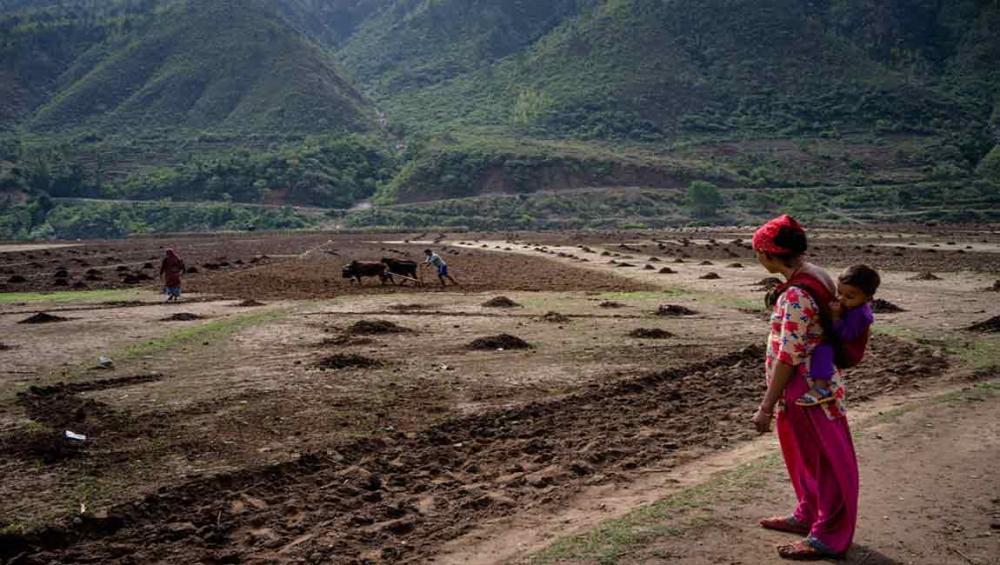 Urgent action needed to address rising global hunger, says UN agency head