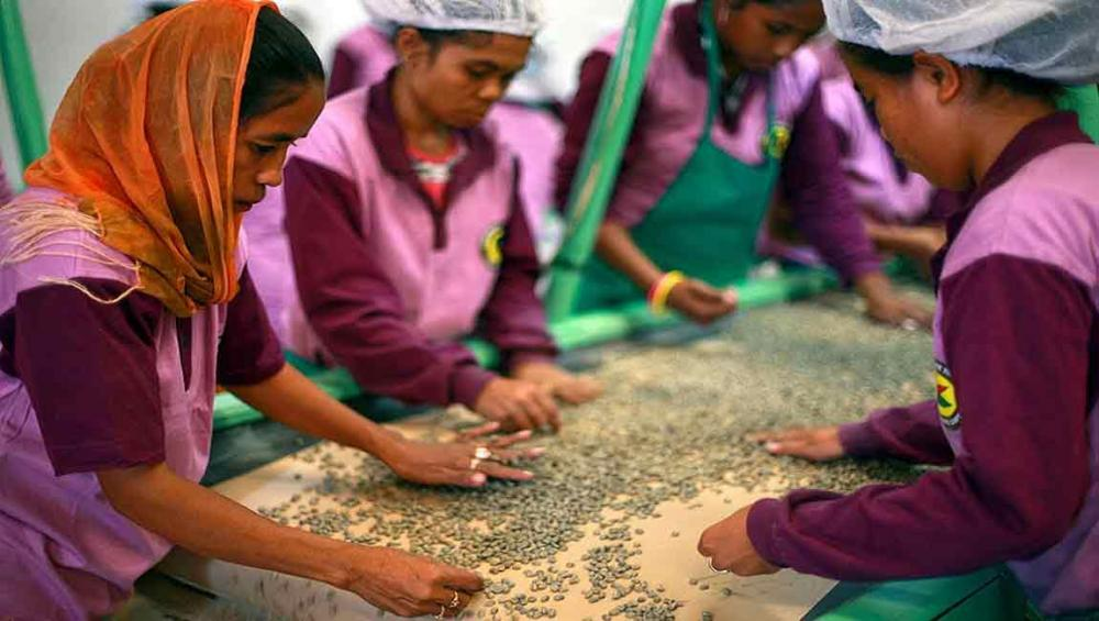 On International Day, UN promotes cooperative solutions for social inclusion