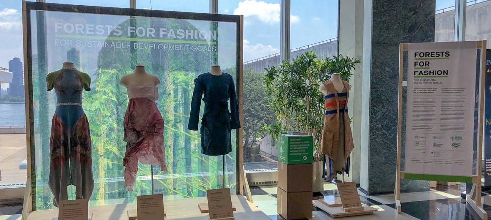 Dress the world in wood, UN says in its 'Forests for Fashion' initiative