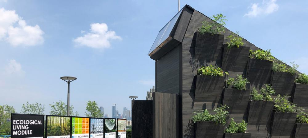 """Small and sustainable: """"Tiny houses"""" could be solution to world's housing problems"""