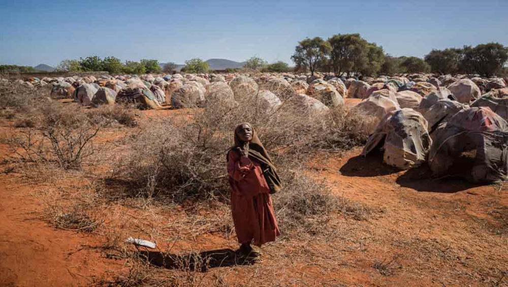 UN seeks $1.06 billion to help fragile countries create 'firewall against famine'