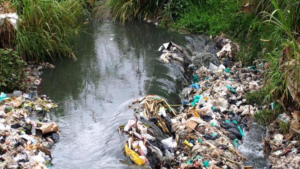 Curb throw-away culture, says UN-Habitat chief, highlighting world day