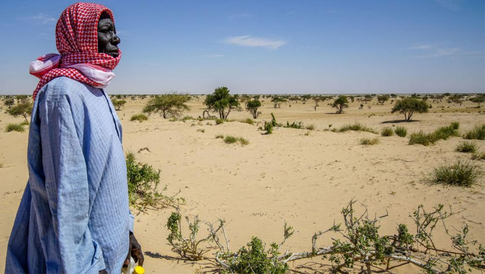 World food security increasingly at risk due to 'unprecedented' climate change impact, new UN report warns