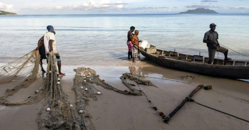 Sustainable fishing staying afloat in developed world, sinking in poorer regions