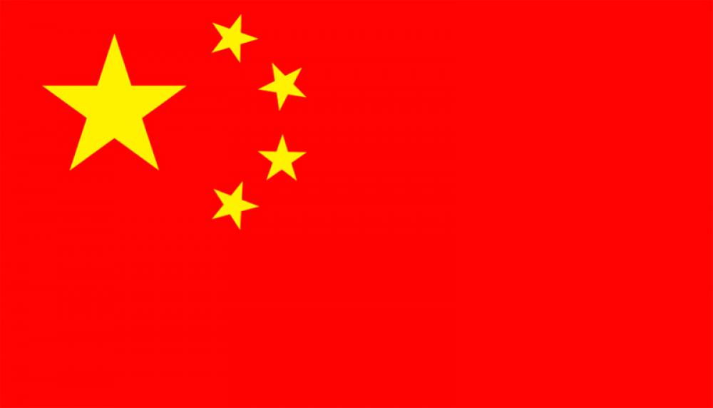 Vice governor of China