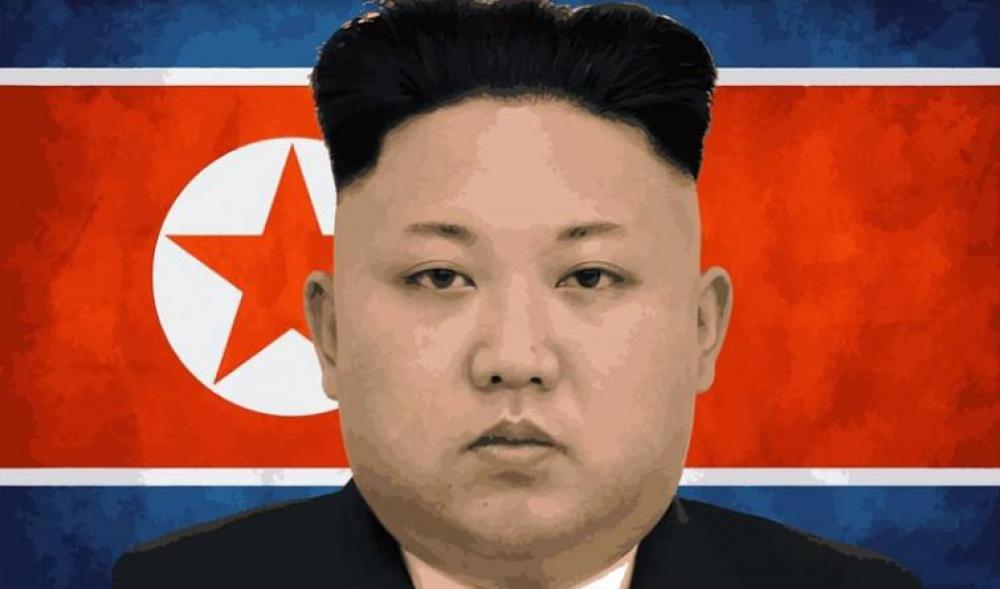 IAEA head says north Korea