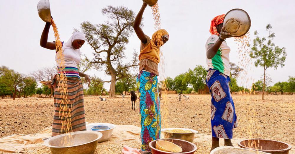 Burkina Faso crisis and COVID-19 concerns highlight pressure on Sahel food security