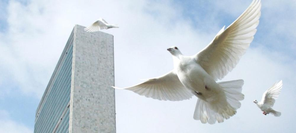 Counting down to Peace Day, UN chief urges: Stand up against hatred and care for planet