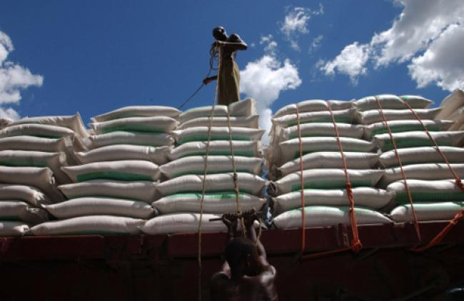 Food prices expected to be less volatile: UN