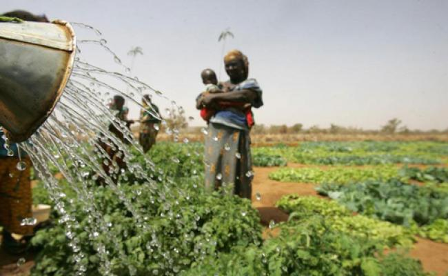 UN calls for investment in rural Africa