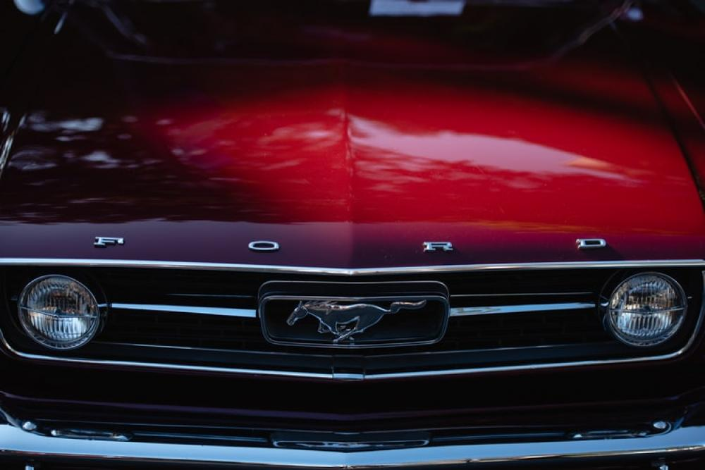 Ford recalls some imported vehicles