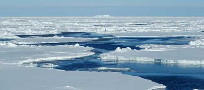 Ban appoints special envoys on climate change