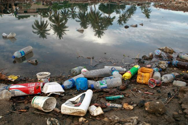 Plastic waste causes $13 billion in annual damage to marine ecosystems: UN