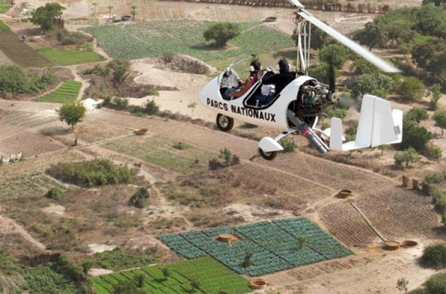 Senegal: UN welcomes efforts to eradicate tsetse fly
