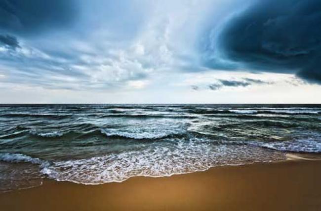 Ban hails impact of UN climate change treaty