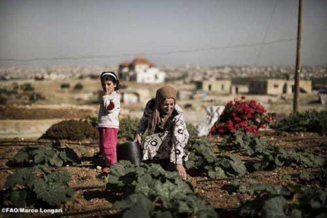 North Africa: Water scarcity among food security issues
