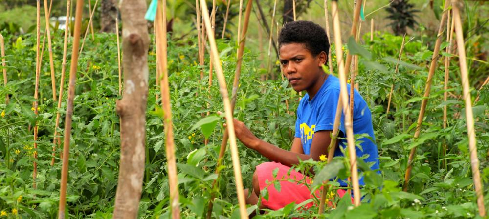 UN commits to help Pacific island agriculture adapt and survive climate crisis