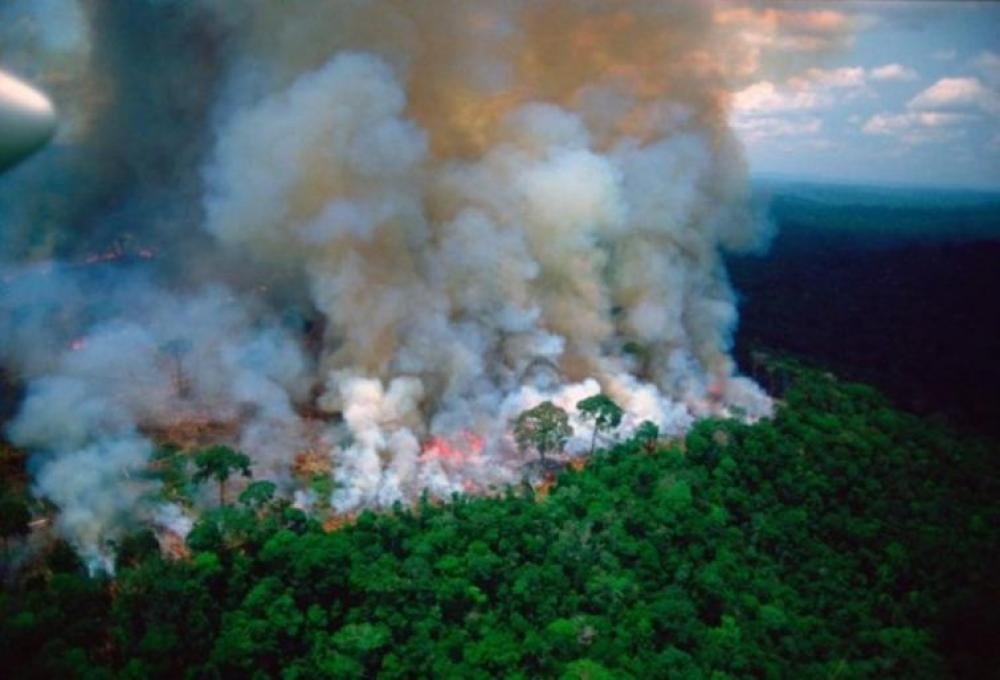 Brazil to discourage using fire for land clearance as Amazon wildfires persist