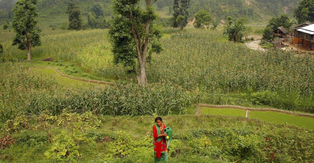 Over $39 million earmarked by UN-backed fund to combat effects of climate change in Nepal