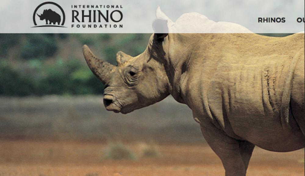 International Rhino Foundation awards emergency grant for tourism economy and rhinos in Southern Africa