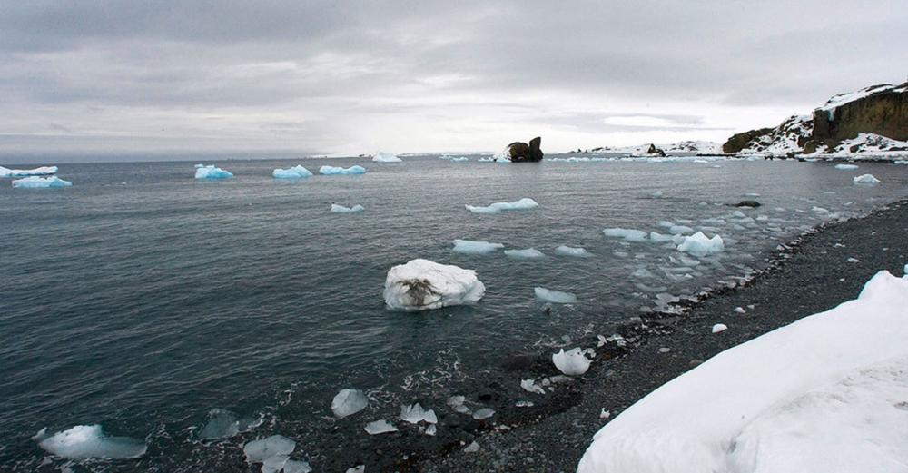 Climate crisis: Antarctic continent posts record temperature reading of 18.3°C