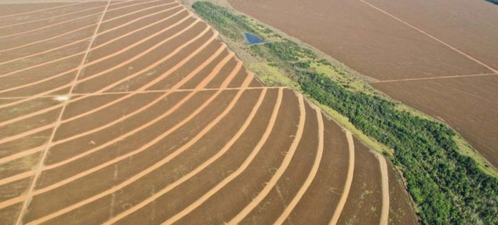 Most agricultural funding distorts prices, harms environment: UN report