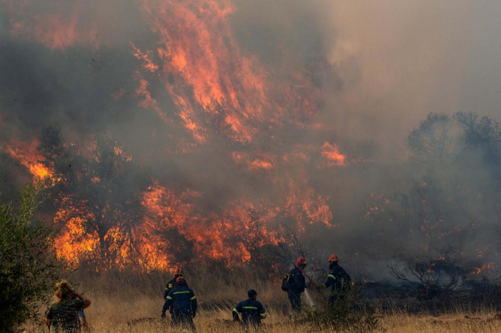 Recent wildfires triggered by climate change, to be a norm if not acted quickly: Experts