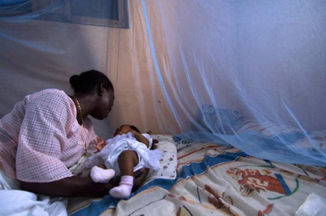 UN lauds progress in malaria fight despite less funding