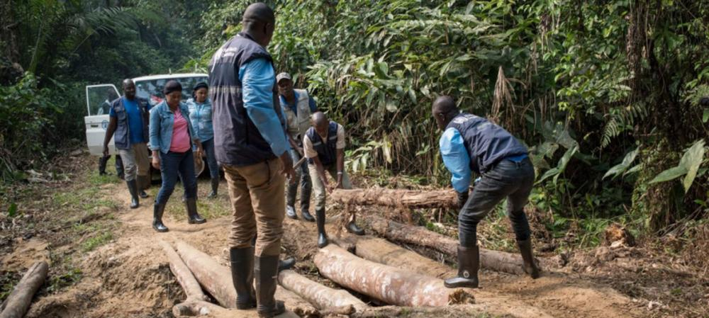 Conflict in new Ebola zone of DR Congo exacerbates complexity of response: WHO emergency response chief