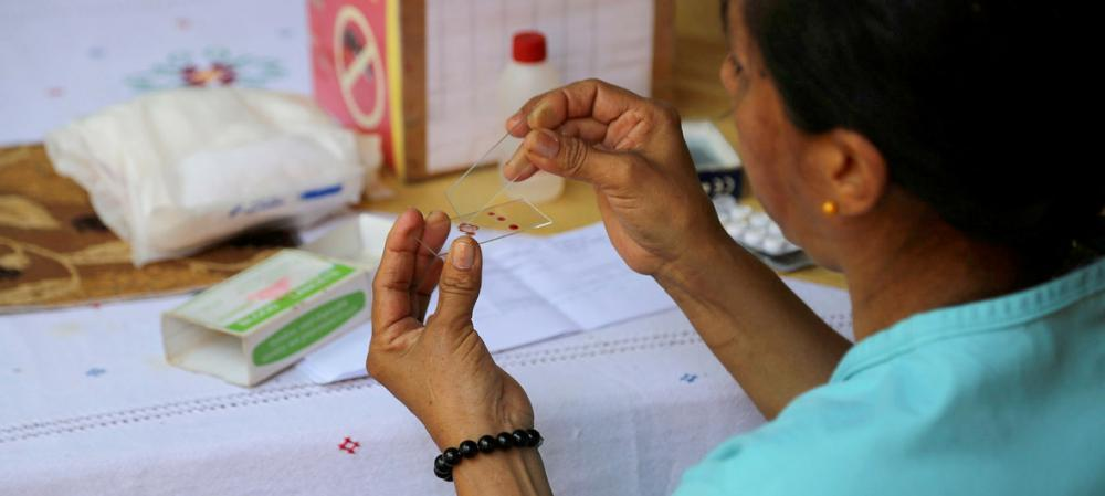 Paraguay's elimination of malaria 'shows what is possible' – UN health agency
