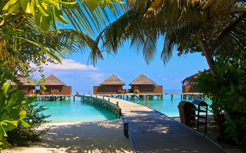 Maldives reports 11th COVID-19 death