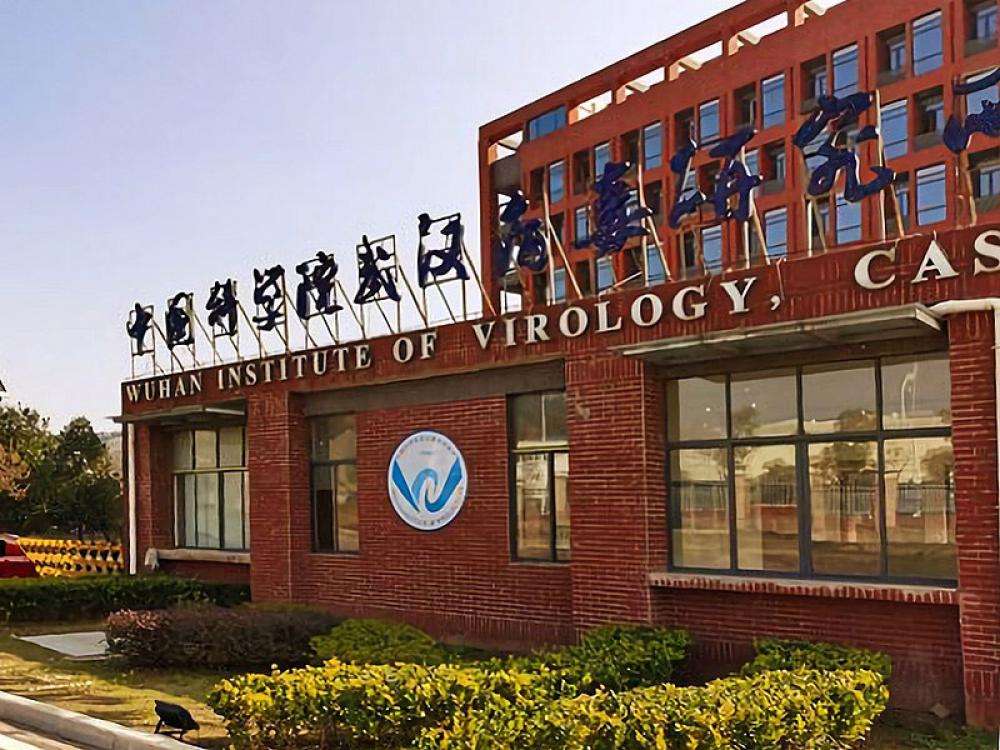 Investigation finds 26 out of the 27 Lancet scientists debunking that Covid leaked from a Chinese lab have links to Wuhan