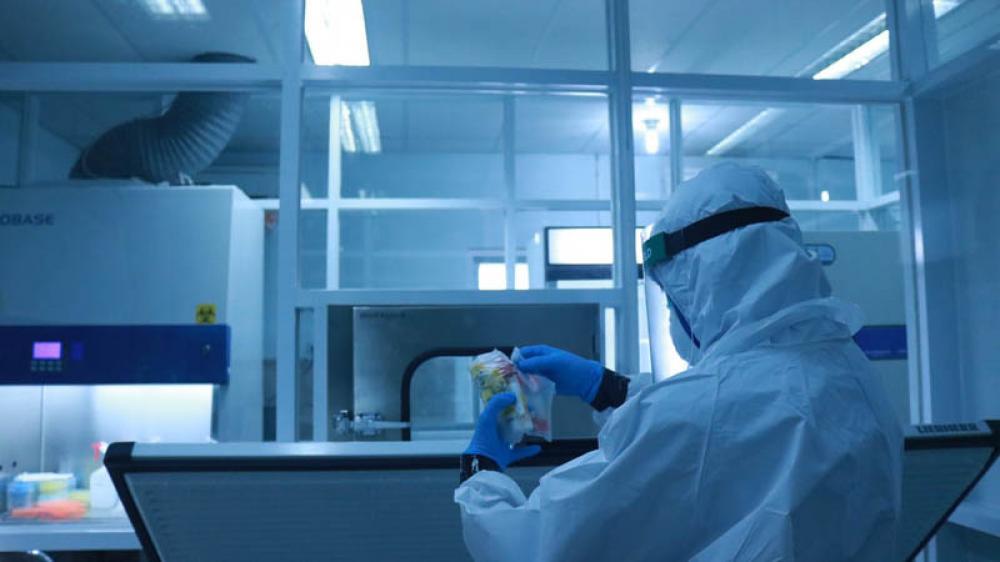 Coronavirus antiviral pill can halve risk of hospitalization