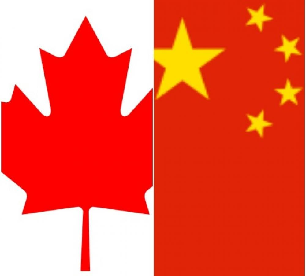 Canadian teacher detained in China has been released: Reports