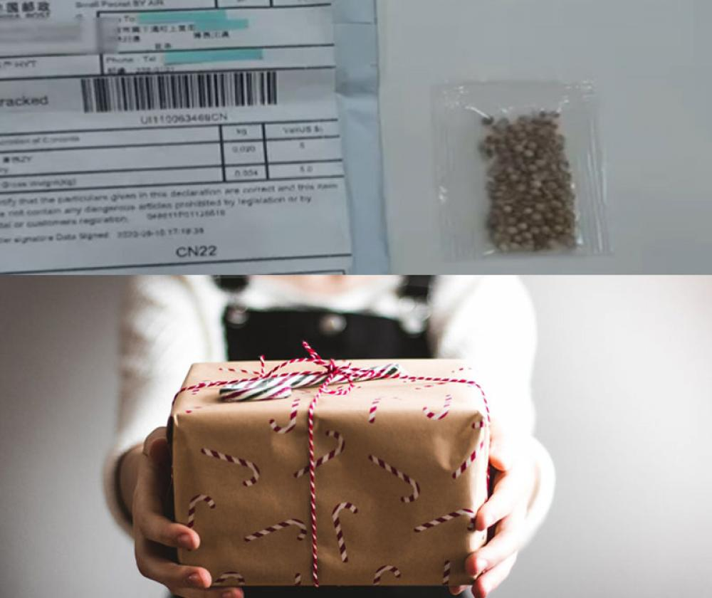 Amid COVID-19 pandemic, some Japanese say they received mysterious seed parcels from China