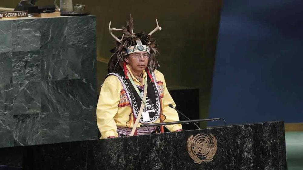 Status of declaration on indigenous peoples