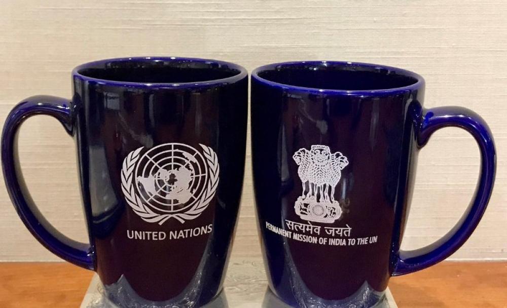 India calls Pakistan Terroristan at UN General Assembly