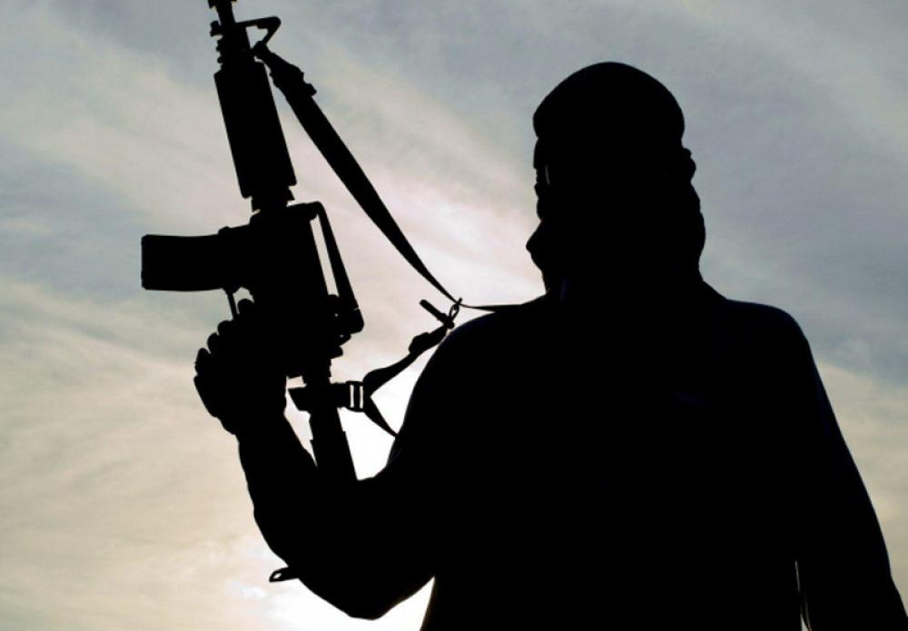 Death toll from Boko Haram ambush on Nigerian gov
